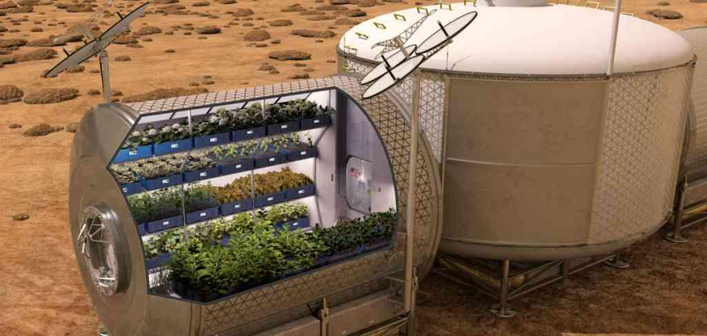 History of hydroponics.