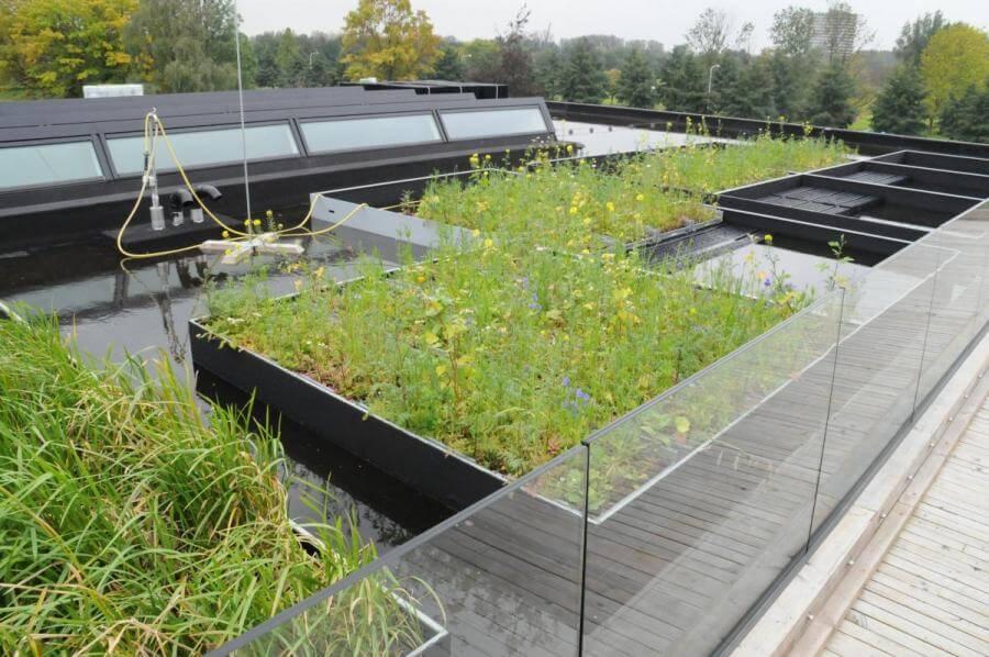Nederlands instituut voor ecologie